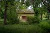 little lonely (severalsnakes) Tags: kansas m3528 pentax saraspaedy shawnee shawneemissionpark k1 manual manualfocus