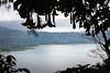 Les clochettes du lac (Ye-Zu) Tags: lac tdm bali danau buyan lake tourdumonde worldtour indonésie