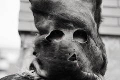 antruejos_11 (alfonso_gm) Tags: antruejos carnaval astorga spain leon celtic ritual wintermasks