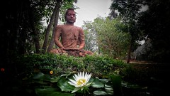 #peaceBuddha #Dakshinchitra (lavanyan gunalan) Tags: peacebuddha dakshinchitra