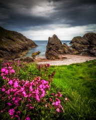 Coastal Flora (Augmented Reality Images (Getty Contributor)) Tags: canon cliffs clouds colours flowers landscape leefilters longexposure morayfirth portknockie rocks scotland spring water waves