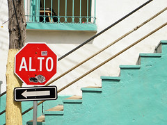 Alto (Alveart) Tags: guatemala lake suramerica southamerica latinoamerica latinamerica centroamerica centralamerica alveartluisalveart peten elpeten lago petenitza flores isladefloresguatemala isla island
