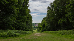 A walk in the park (PhredKH) Tags: trentpark park bluesky greengrass green openspace trees outdoor outdoorphotography canon canoneos canonphotography 2470mm phredkh fredkh