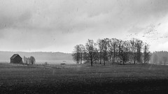 Countryside Hailstorm (trm42) Tags: spring landscape mustavalko finland cityscape rural maaseutu kevät olympusomd countryside bw urban em1 hailstorm mv suomi blackandwhite helsinki dramatic raekuuro viikki finnishspring