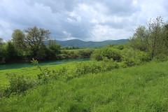 2017-05-12 12-15-24 - IMG_8718 (rudolf.brinkmoeller) Tags: wandern slowenien laibachermoor ljubljanskobarje landschaft natur ljubljanica