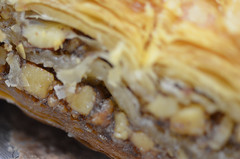 Baklava (rchrdcnnnghm) Tags: pastry baklava micro