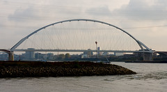_DSC7659 (durr-architect) Tags: spiegelwaal ruimte room river waal nijmegen netherlands high water flood island bridge nevengeul