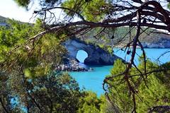 L'arco di San Felice (giorgiorodano46) Tags: giugno2017 june 2017 giorgiorodano nikon italy puglia gargano vieste adriatico mare sea cliff costa coast macchiamediterranea