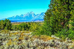 A view of the Tetons off in the distance (Beangrau12) Tags: tetons mountains meadows grasses openbluesky