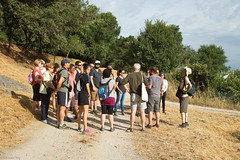 08072017-_POU7931 (Salva Pou Fotos) Tags: 2017 ajuntament fradera grupsenderista observatorifauna pont aiguamolls barberàdelvallès caminada pou