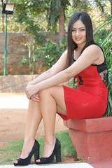 Indian Actress Nikesha Patel Hot Sexy Images Set-2 (40)