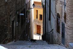 Tolède (hans pohl) Tags: espagne castillelamanche toledo villes cities rues streets stairways escaliers architecture fenêtres windows