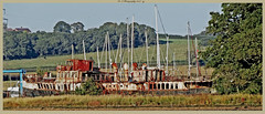 PS Ryde on Isle of Wight (dark-dawud) Tags: psryde isleofwight land landscape wreck paddlesteamer passengerferry england williamdennyandbrothers dumbarton 1937 rust