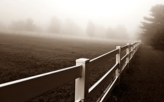 The Fence (SkyeHar) Tags: fence landscape mist fog corral trees pasture sepia morning dawn sepiaimpressions selp1650 a6300 weather sonya6300 landschaft