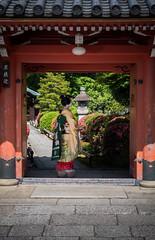 Maiko_20170528_13_2 (kyoto flower) Tags: eishoin temple tomitsuyu kyoto maiko 20170528 舞妓 栄摂院 富津兪 京都 hiseongkim