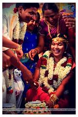 Best Candid Photography in Villupuram (vsgfotos) Tags: candidphotography weddingphotography weddingreceptionphotography photosandvideos coverphotography outdoorphotography candidspecialist birthdayphotographychennai mahabalipuram velankanni seerkazhi mayiladudhuari kumbakonam virudhachalam kallakurichi karaikal cuddalore neyveli chidambaram villupuram tindivanam mantharakuppam vadalur chengalpat nagapattinam trichy madurai panruti coimbatore pondicherryandallovertamilnaduwebsitehttpvsgfotoscommailidvsgfotosgmailcomcontact919884745050919790675494