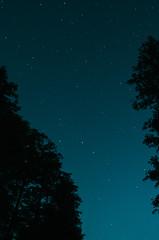 Big Dipper (Litwos) Tags: colour bigdipper night stars
