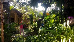 Private Seminyak villa garden, Bali (scinta1) Tags: indonesia bali seminyak villa garden pool green peaceful tranquil restful tropical trees palms leaves flowers bohemian private plants reflection mirror shade shadows orchid purple