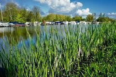 DSC05682 (hofsteej) Tags: middendelfland holland netherlands vlaardingervaart broekpolder april