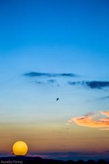 #sunset  in #mykonos  #greece  #mediterraneansea (lelobnu) Tags: sunset mykonos greece mediterraneansea