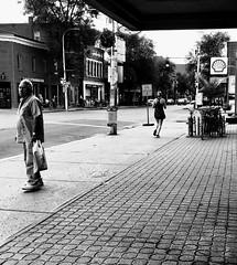 il vaut mieux courir ; l'autobus est encore loin... (woltarise) Tags: montréal outremont métro arrêt autobus vanhorne avenue wiseman rue passant joggeuse streetwise