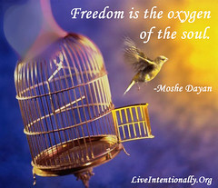 quote-liveintentionally-freedom-is-the-oxygen-of (pdstein007) Tags: quote inspiration inspirationalquote carpediem liveintentionally