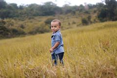 Pequeno Miguel, (rodolphofotografiassouza) Tags: child children criança kid people boy garoto guy canon t5 50mm human pessoa gente garotinho green itanagra