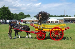 Sunday at The Kent County Show, Detling....archiving. (favmark1) Tags: sunday 2017 detling kent county show