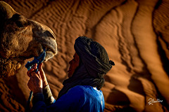 Small Talk (Riccardo Maria Mantero) Tags: mantero riccardo maria camel desert marrakech morocco people portrait sahara sand travel riccardomantero riccardomariamantero