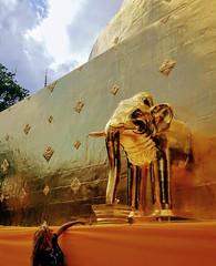 Wat Phra Singh, Chiang mai (Cleu Corbani) Tags: thailandia dorado wat elefante elephant cleucorbani cultura religiones lugares ensueño