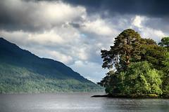 Inveruglas Isle (OutdoorMonkey) Tags: inveruglas lochlomond benlomond scotland nationalpark lochlomondandtrossachsnationalpark water lake island tree trees wood wooded cloud sunshine evening landscape waterscape