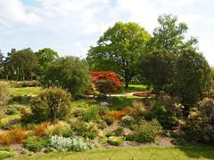 P5102511 (simonrwilkinson) Tags: nymans nationaltrust haywardsheath westsussex handcross garden landscape trees