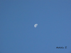 IMG_0003 (Natalia Sosa M.) Tags: luna moon morning mañanero blue sky venezuela