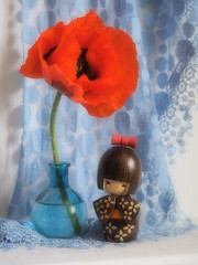 Still Life with Red Poppy (Smiffy'37) Tags: stilllife objects poppy red softfocus