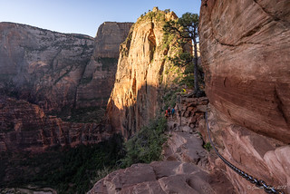 Angel's Landing trail