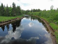 Rivière / Tidnish / River (deplour) Tags: rivière tidnish river nuages reflets clouds reflections arbres trees