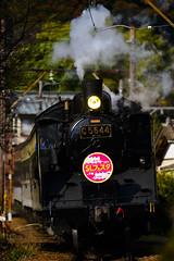 DSC9905 (__nEUROn__) Tags: locomotive shizuoka train railway oiwagarailway jnr c56 蒸気機関車 大井川鉄道 静岡県