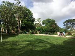 Botanic Gardens Trip