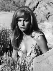 Raquel Welch in One Million Years B.C. (1966) (Tom Simpson) Tags: raquelwelch onemillionyearsbc 1966 pinup boobs bikini woman girl cavegirl cavewoman 1960s vintage film movie