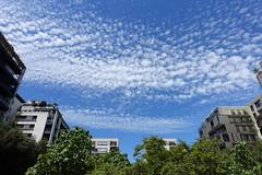 Square Nicole de Hauteclocque @ Paris (*_*) Tags: paris france europe city june 2017 printemps spring sunny hot sunday squarenicoledehauteclocque park paris15 75015