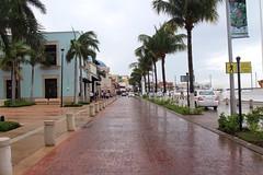 Cozumel (Prayitno / Thank you for (12 millions +) view) Tags: konomark cozumel mx qroo quintana roo mexico day time rainy wet road street avenue avenida cloudy gloomy outdoor palm tree beach caribbean ocean weather