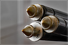 macro monday: bottoms up (DeCo2912) Tags: macro manoday bottoms up extension tube brass tripod spikes