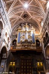 @MariusBucsaFoto en Facebook (mariusbucsa) Tags: iglesia interior historia patrimonio calatayud zaragoza aragón españa 1855 nikon nikond5600 church spain