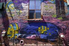 Brainy fish (aerojad) Tags: eos canon 80d dslr 2017 city urban art artinpublicplaces streetart publicart mural murals graffiti vacation travel wanderlust graffitialley toronto canada vibrant colorful