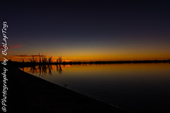 IMG_5513 (biglaptogs) Tags: barmera lakebonney riverland sa states sunsetsunrise