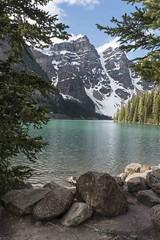 Moraine Lake (Vicki Braunagel) Tags: birds banffnp canada morainelake warblers
