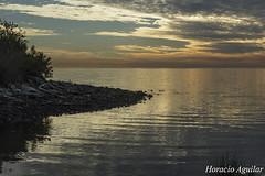 Amanecer (Florián Paucke) Tags: amanecer ríodelaplata costa argentina río ola agua playa guijarro marea horizonte sol nubes alba ecología ecosistema naturaleza naturalista recreación turismo tranquilidad paz armonía placer humedal diversión buenosaires desembocadura paseo biotopo cielo barranca pedregullo