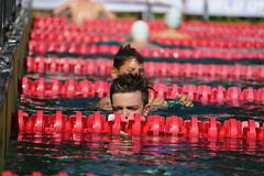 AM9R3033 (OE5PGM) Tags: 45internationaleswelserspeedomeeting 0304062017 welldorado wels msecm austria 50m 100m 4x50m gemischt vorlauf entscheidung halbfinale finale freistil damen herren kinder brust schmetterling rücken lagen pool wasser water swimming freibad