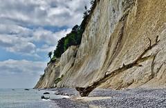 Schön, aber nicht ungefährlich - Beautiful, but not harmless (cammino5) Tags: kreidefelsen rügen sassnitz königstuhl juni 2017 balticsea ostsee