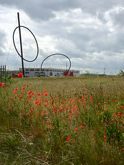 Poppies And Temenos (Glass Horse 2017) Tags: middlehaven middlesbrough teesside riverside temenos sacredspace anishkapor wildflowers poppies